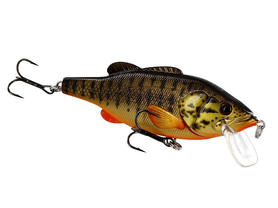 Floating Westin Barry the Bass HL 10cm 22g